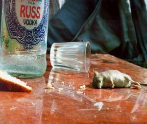 mouse-vodka_cute_funny_drunk_sad