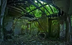 case abandonate-18