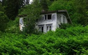 case abandonate-19